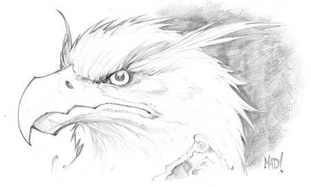 DragonKind Kavian head concept art (Pencil)