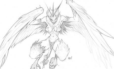 DragonKind vultorture (Harpy) concept art (Pencil)